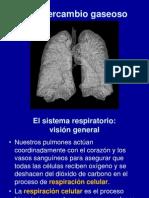 Intercambio+gaseoso+110117
