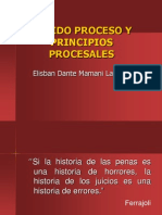 Principios Procesales.presuncion de Inocencia (Dra.quispe)