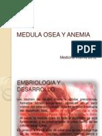MEDULA OSEA Y ANEMIA.pptx