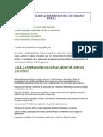 CLASES DE LEVANTAMIENTOS DE TOPOGRAFÍA PLANA