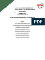 RECOPILACIÓN DE INFORMACIÓN DE LA ORGANIZACIÓN
