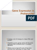 Gene Expression in Prokaryotes