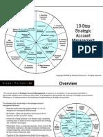 Strategic Account Plan E Book