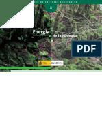 Biomasa 140 Paginas Completo
