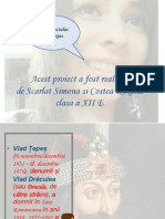Vlad Tepes Proiect