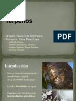 Fisiología Vegetal. Seminario Terpenos.[1] (1)