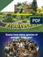 Bio Diversities