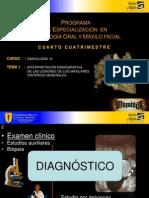 Protocolo en Panoramicas