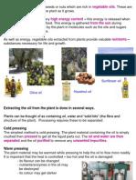 CH1 Plant Oils