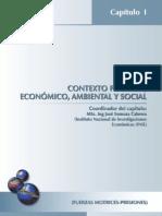 Contexto politico y economico y ambiental }