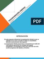 PRESENTACION PROGRAMACION HIBRIDA