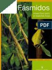 Fásmidos Insectos palo e insectos hoja (LEER ctrl+L)