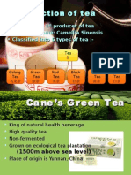 About Green Tea