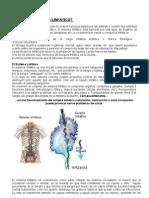 Sistema y Drenaje Linfatico.4