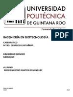 Equilibrio Quimico Entrega- Roger n Santos Dominguez 2