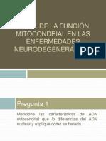 Papel de la función mitocondrial en las enfermedades