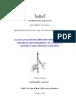 Flauta Dulce en Los Estudios Universitarios