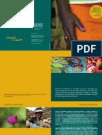 folleto-feminizacion