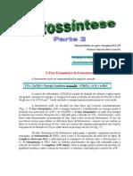 Fotossintese2B