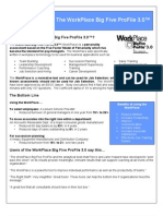 Workplace Big Five ProFile-Introduction