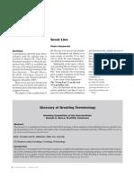 Grouting Terminlogy Glossary - Gazzarrini2006