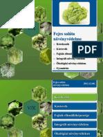Saláta növényvédelme - Előadás anyag (2012).pptx