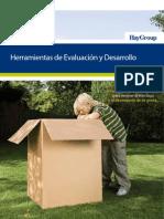 Brochure Evaluacion y Desarrollo Final