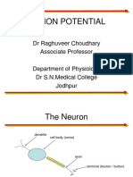Action Potential Basics