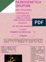 Biogenetica Expo Lucy