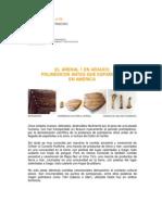 01-POLINESICOS ANTES QUE ESPAÑOLES EN AMERICA