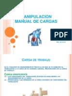 Manual de Cargas