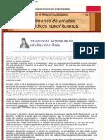 LuxDomini-Exámenes científicos del Ayate Guadalupano