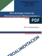 Microbiología Industrial Fermentaciones Biotecnologia