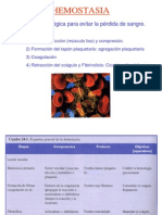 Hemostalsia 1