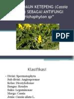 Khasiat Daun Ketepeng (Cassia Alata l)