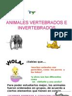 200806280251000.Animales Vertebra Dos e In Vertebra Dos