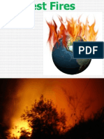 Forest Fire MBA DM 2012