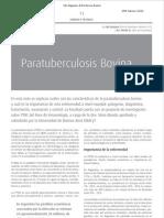 Paratuberculosis Bovina