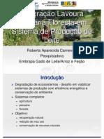 Integraçao lavoura pecuaria floresta