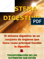 Sistema Digestivo Trabajo Final