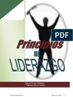 Mci Principios de Liderazgo(Nivel 2)