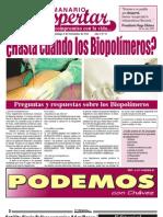 Semanario El Despertar, Edición N°13