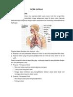 Sistem Respirasi Pada Manusia