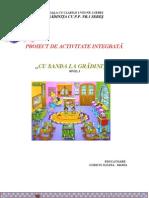Proiect de Activitate Integratc483