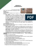 Fasciculo 13 - Constructor de Viviendas