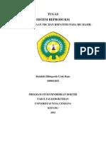 Tugas Dr. Sahadewa Indah Untuk Print
