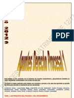Procesal I Apuntes Grupo 2012-2013