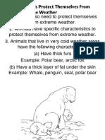 Animal Weather