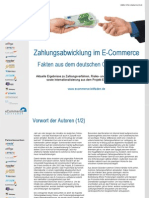 Zahlungsabwicklung Im E-Commerce