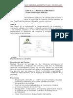 d.audit.06.11.12.Devies Corp